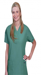 Scrub set $9.75   3 pocket normal ladies solid half sleeve (2 pocket top 1 pocket pant)
